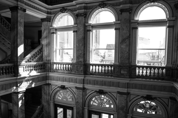 Tea Central Library-3