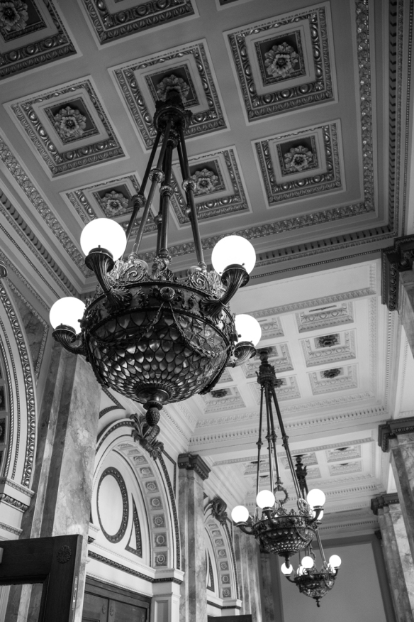 Tea Central Library-5